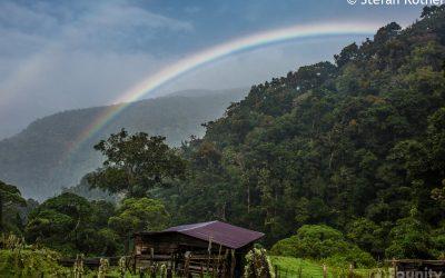 Rundreise zu Regenwaldschutz-Projekten in Costa Rica