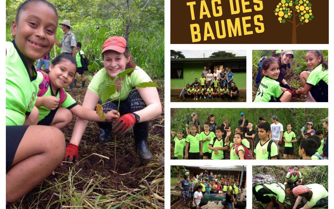 Monte Alto: Tag des Baumes mit Schulklassen aus der Umgebung