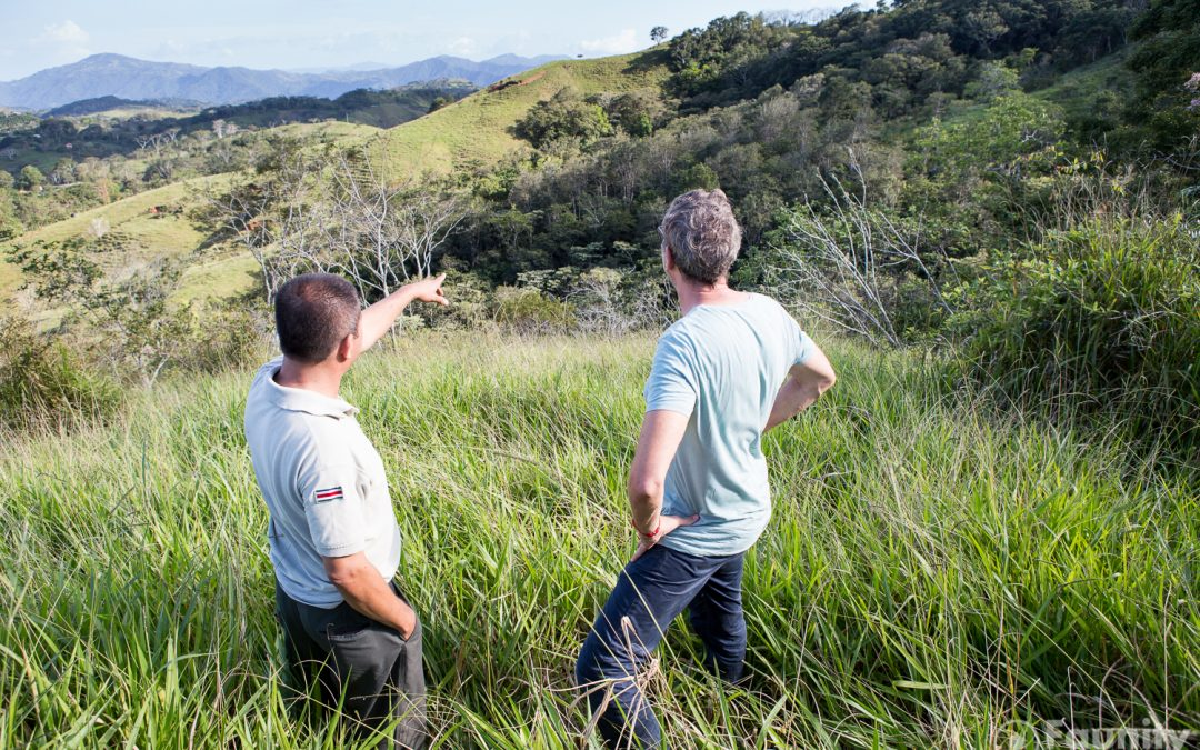 Hojancha – Ein Ort ohne Wald