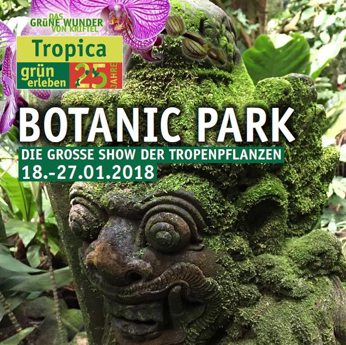 Erleben Sie mit uns die tropische Pflanzenwelt in Kriftel!
