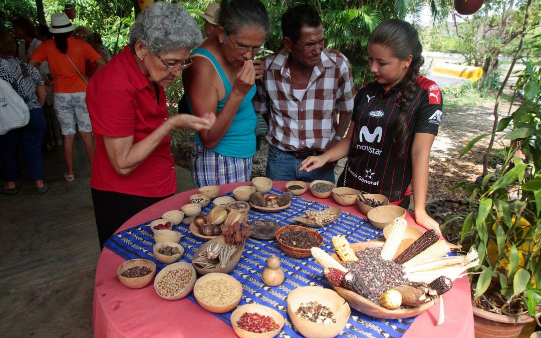Neue Baumschule für landwirtschaftliche Zwecke geplant